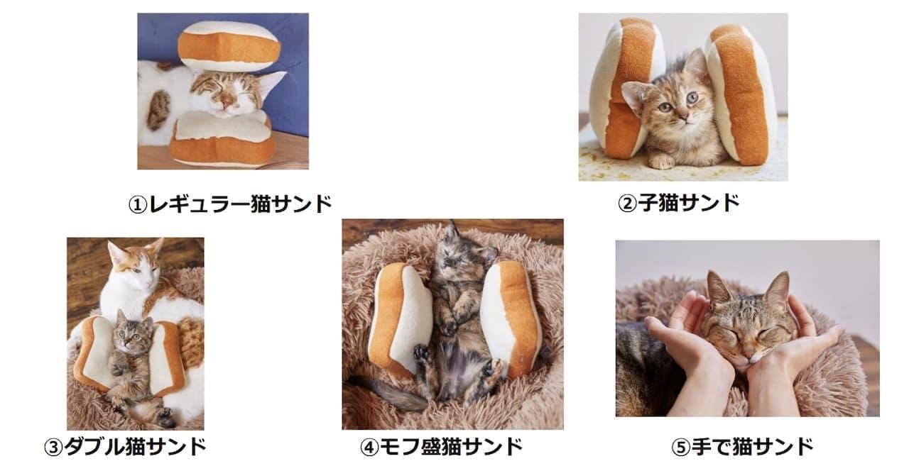 サブウェイ史上初「ほっこり猫サンド」