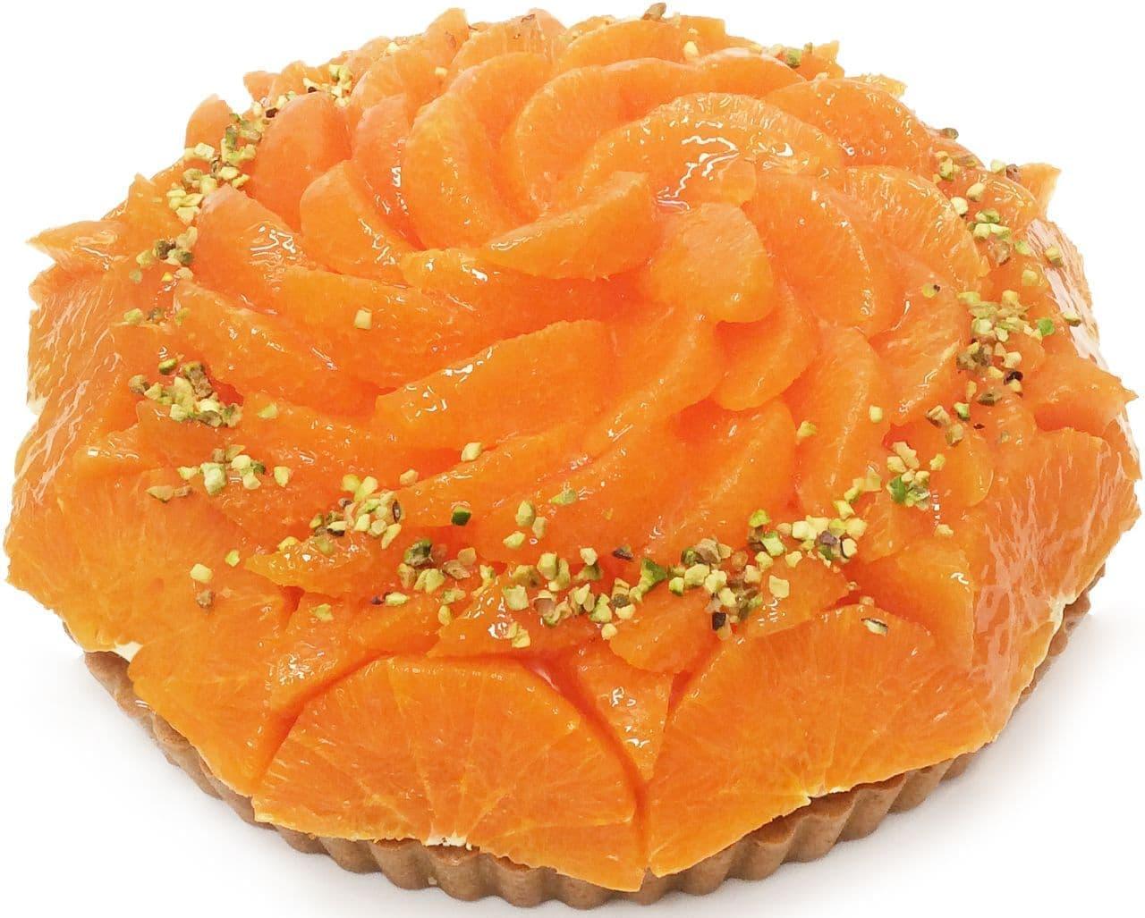カフェコムサ「愛媛県 宇和島 山内農園産「せとか」とピスタチオレアチーズのケーキ」