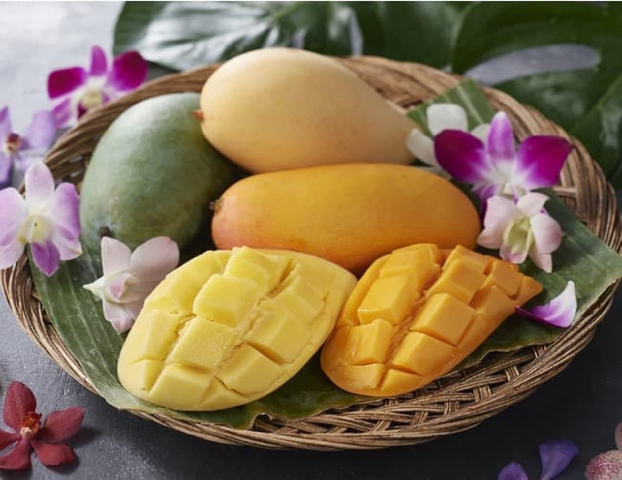 タイ産マンゴー「ナムドクマイ種」「キオサウェイ種」「マハチャノ種」