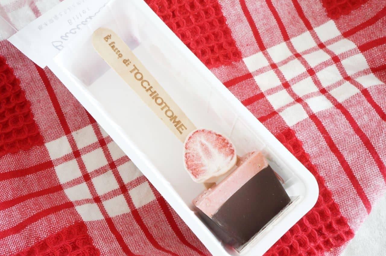 苺のチョコスプーン「バーチャミ」ビター