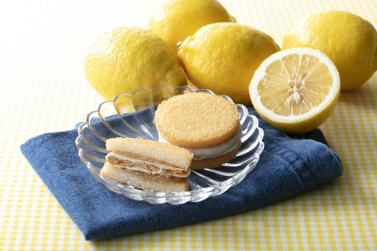 シャトレーゼ レモン ケーキ
