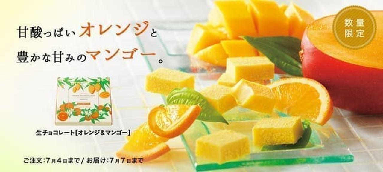 ロイズ「生チョコレート[オレンジ&マンゴー]」