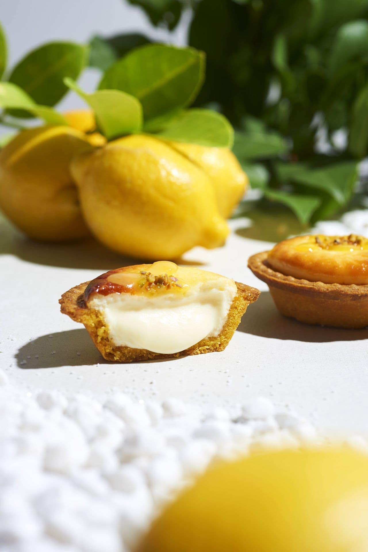 ベイク チーズタルト「潮風レモンチーズタルト」