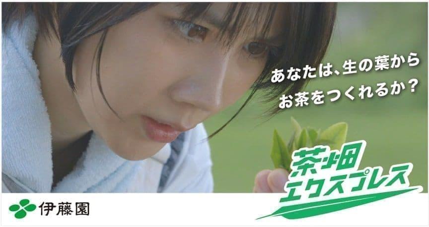 伊藤園「#茶畑エクスプレス~あなたは生の葉からお茶を作れるか?~」キャンペーン