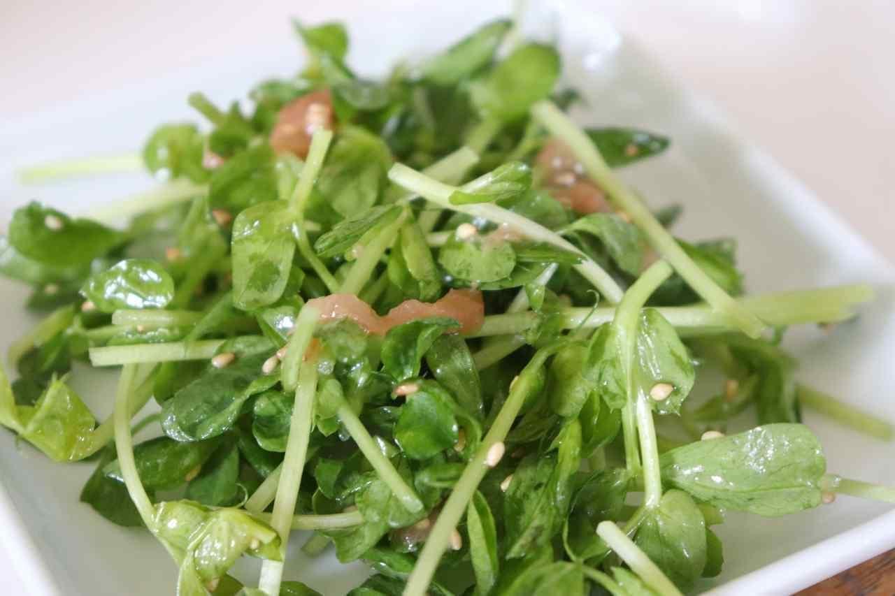 豆苗の梅サラダレシピ