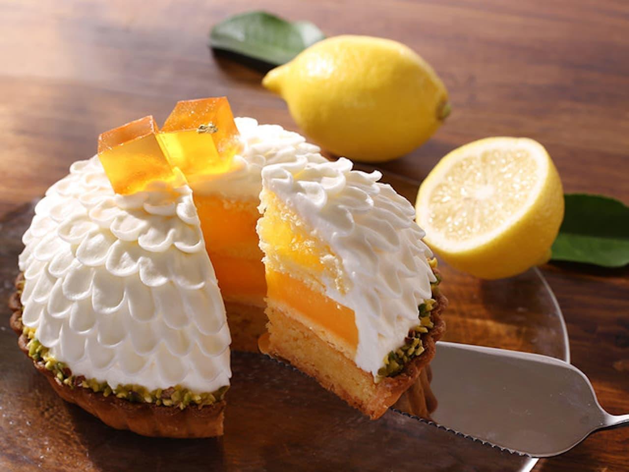 アンテノール「瀬戸内レモンのタルト」