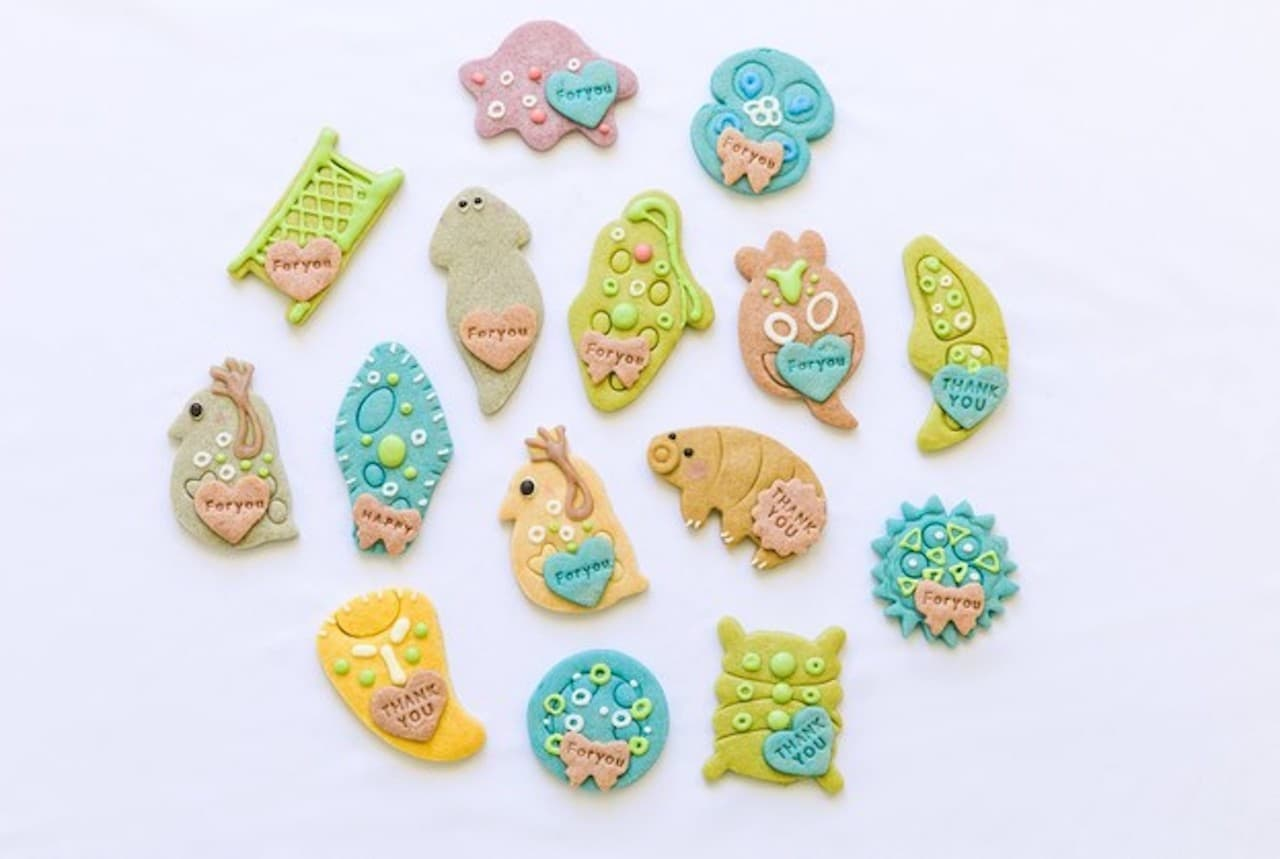 「微生物クッキー」いきものクッキーkurimaroから