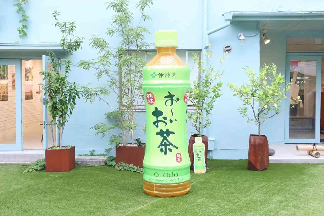 伊藤園「日本茶の日」オンラインイベント開催