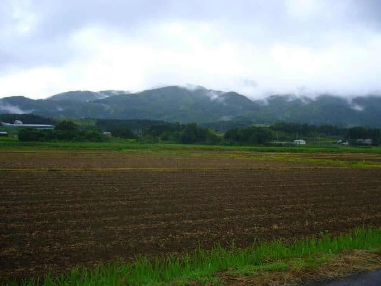 カフェ「木古里」周辺の風景