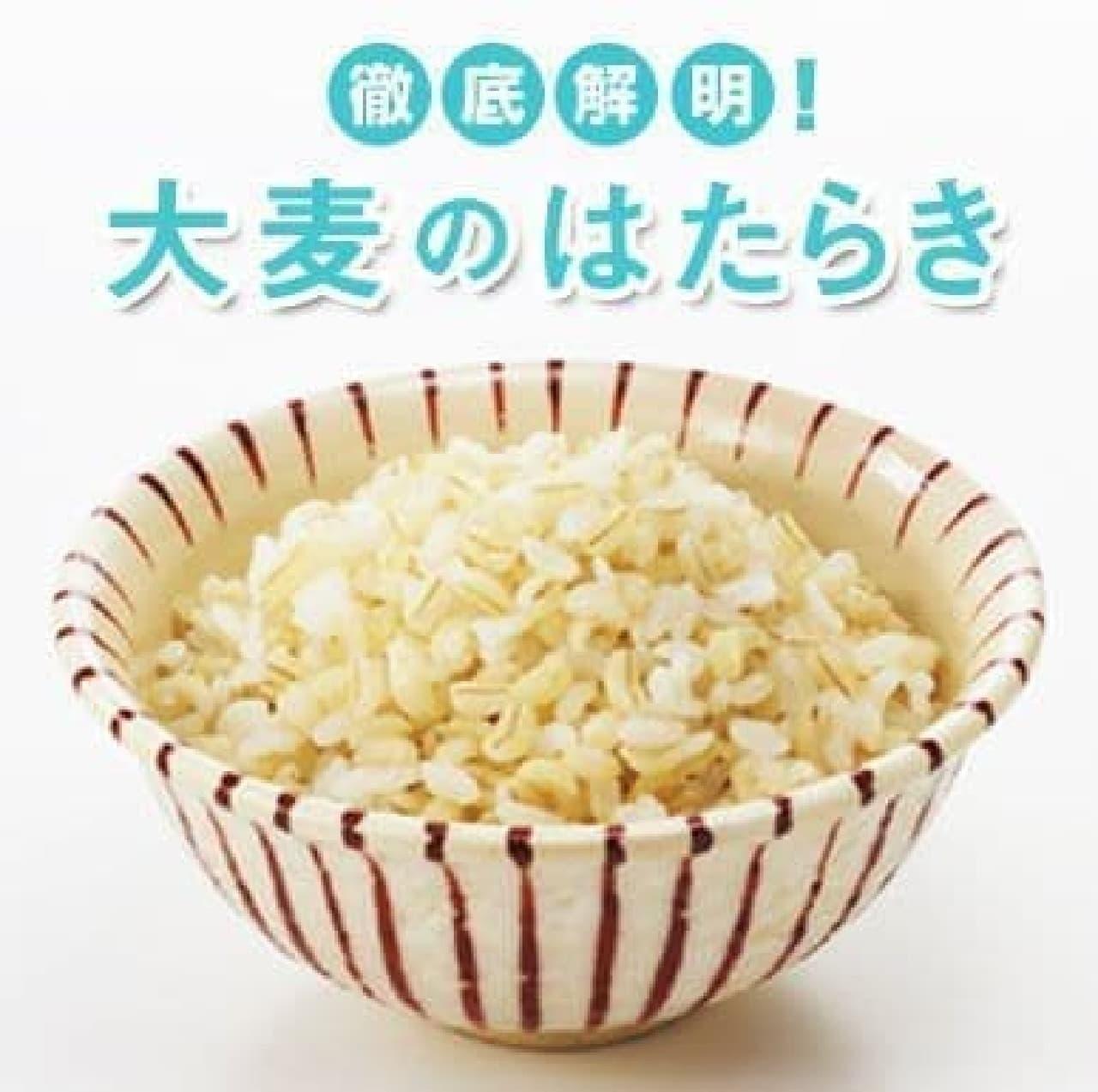 大麦(もち大麦)の食物繊維が、女性の内臓脂肪を低下させる―はくばく調べ