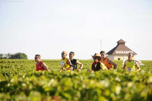 ぶどう畑の中を、ワインを飲みながら走る「メドックマラソン」   (出典:大会公式HP http://www.marathondumedoc.com/)