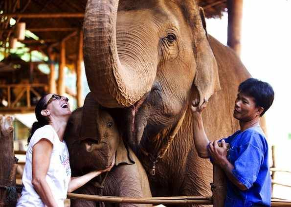 Anantara ホテルでは、ゾウの背中に乗って森林トレッキングを楽しむこともできる