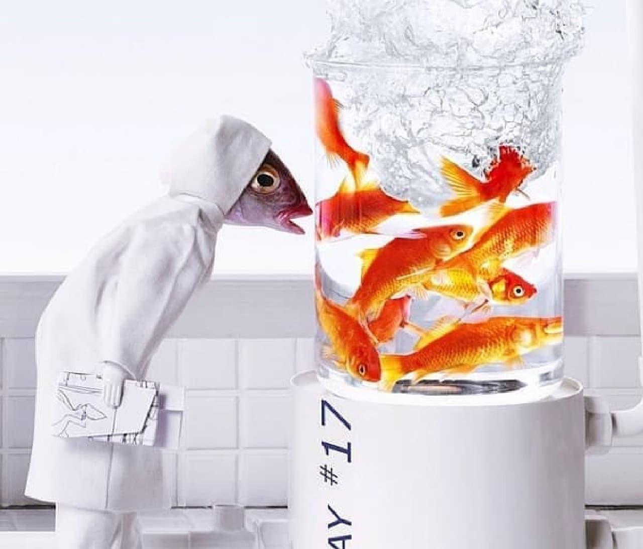 作品には、ブラックなものも多くみられる  こちらは、魚を飼育する魚