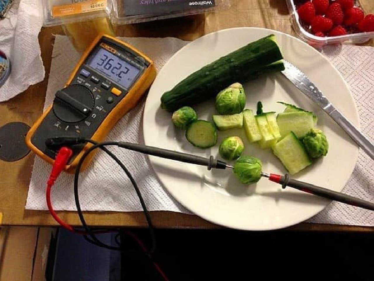 Kumar 氏は、様々な食べ物の電気抵抗値を測定した