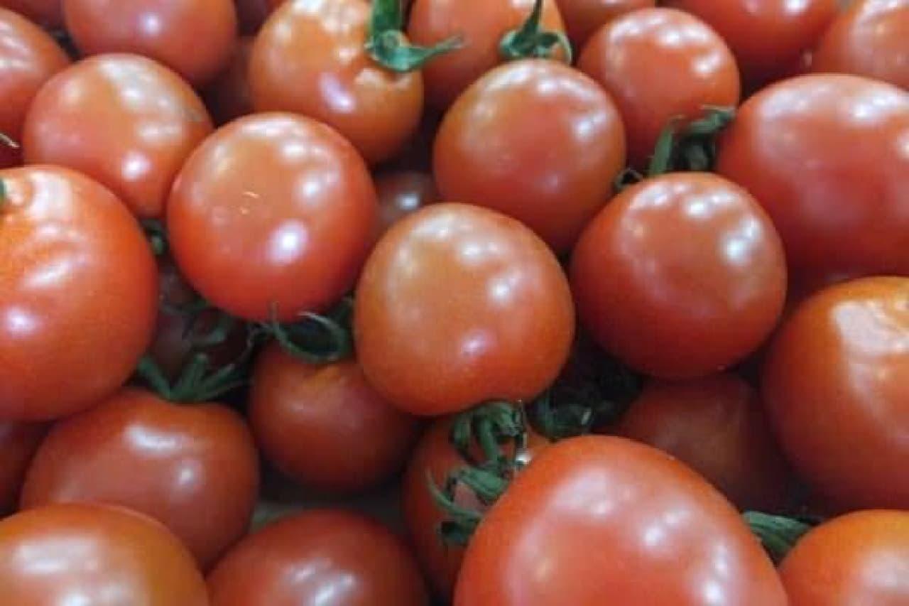 果肉のつまったあま~い冬トマト