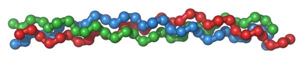 体内のコラーゲンって、こんな形をしているらしい
