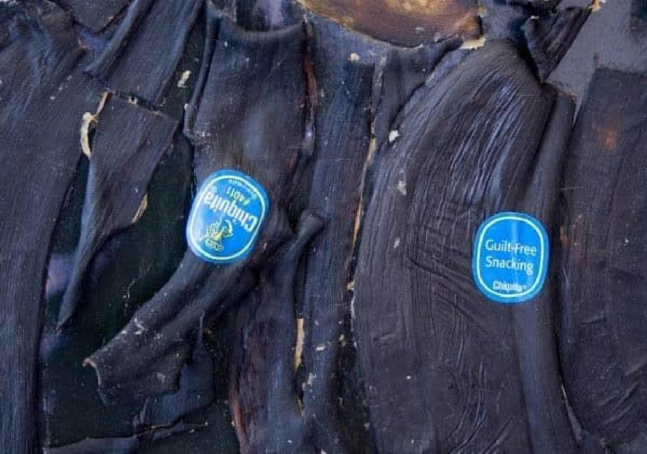 ぽつぽつ青いのはバナナのシール  (出典:Matthew J Mahoney 氏 Web サイト)
