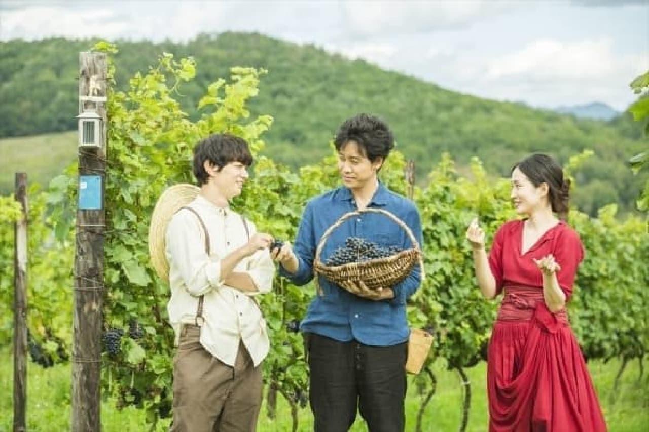 10月11日公開 映画「ぶどうのなみだ」