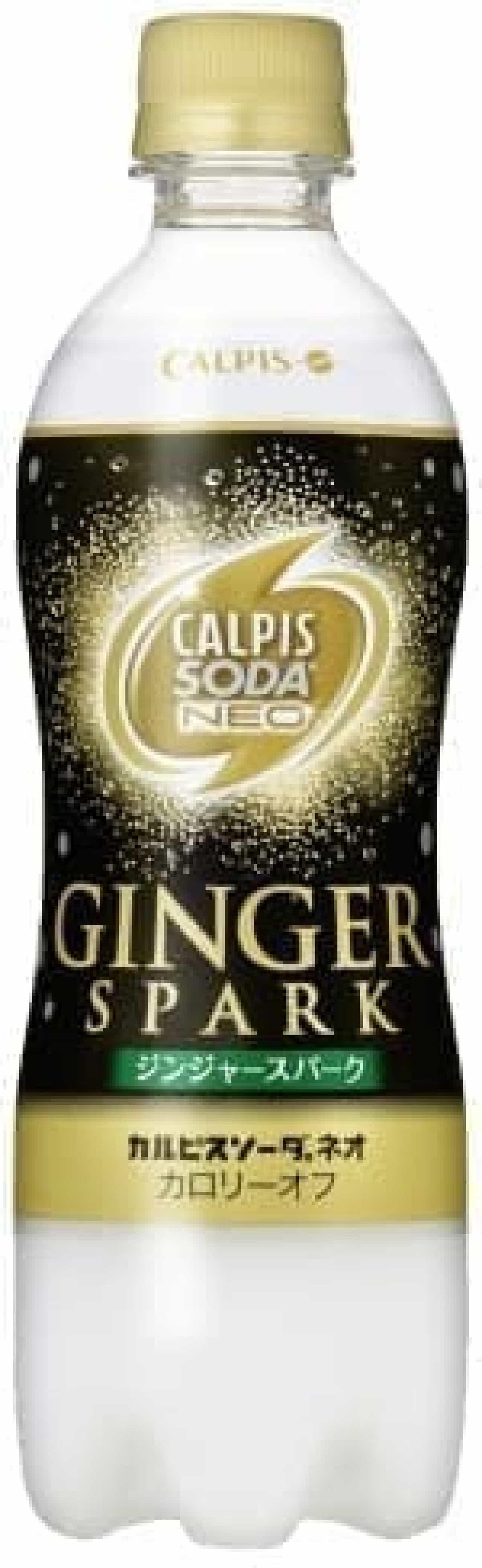 力強く刺激的な味わい  「ジンジャースパーク」