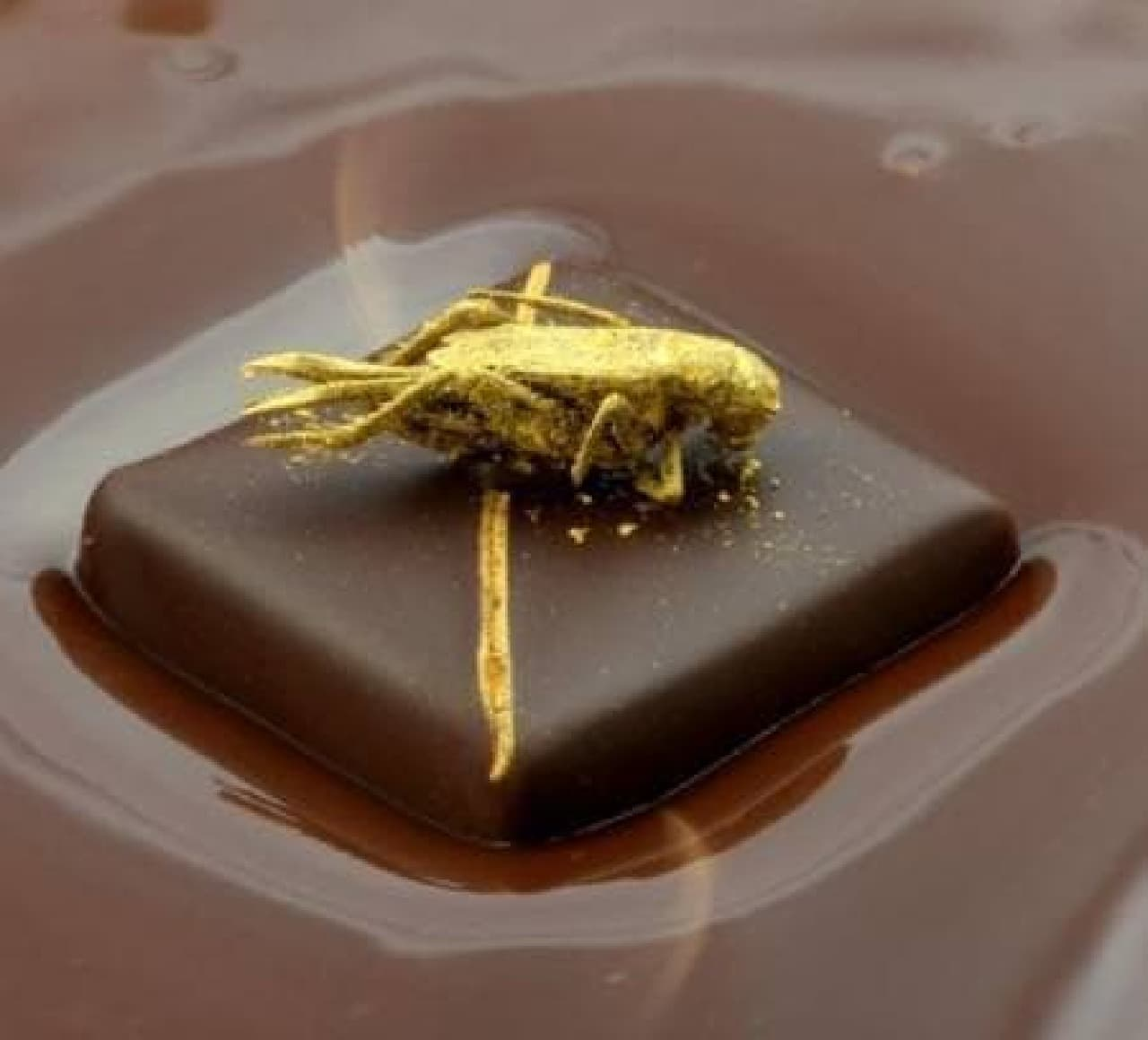 シルバン ムスカール氏が発表した新作チョコレート  コオロギのトッピングがキュートだ