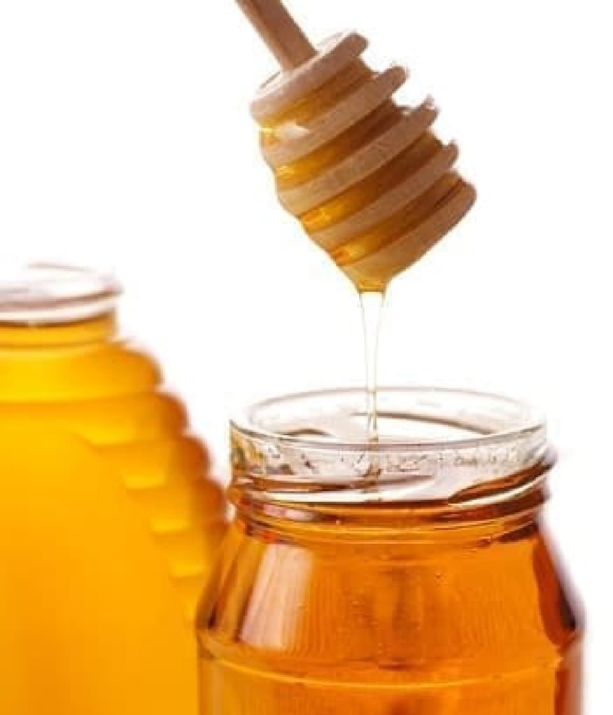 実は大きな役割を果たしているミツバチ