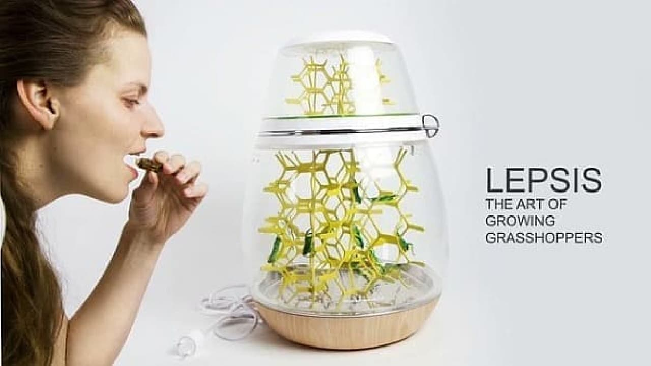 Lepsis を使えば、家庭で手軽に昆虫を養殖できる