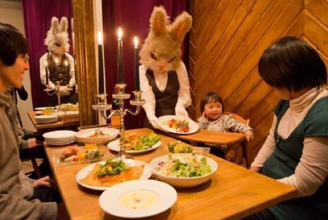 給仕ウサギに会えたらラッキー?