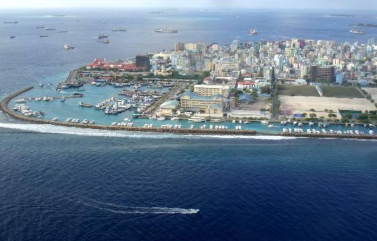 モルディブの島々の1つ  なるほど、放牧などは難しそうです