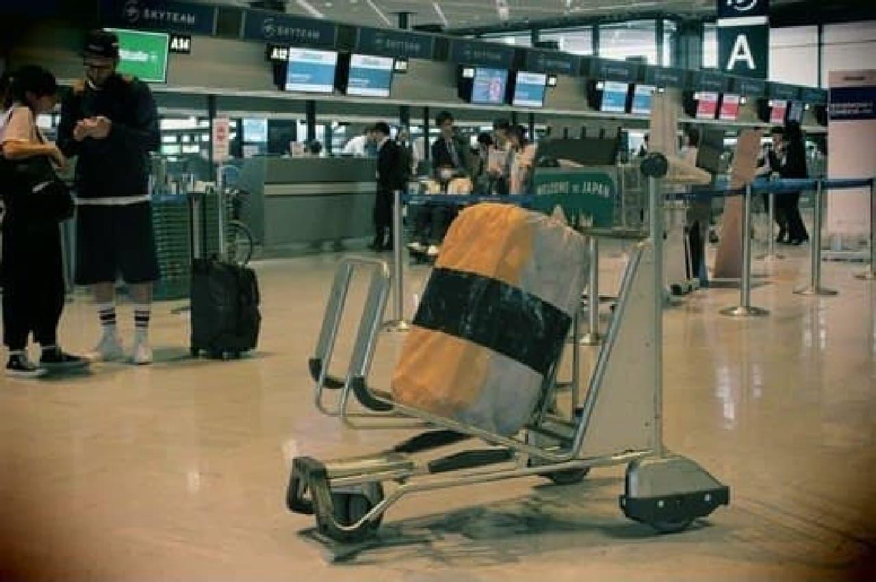 ほら、空港にもなじんでいる