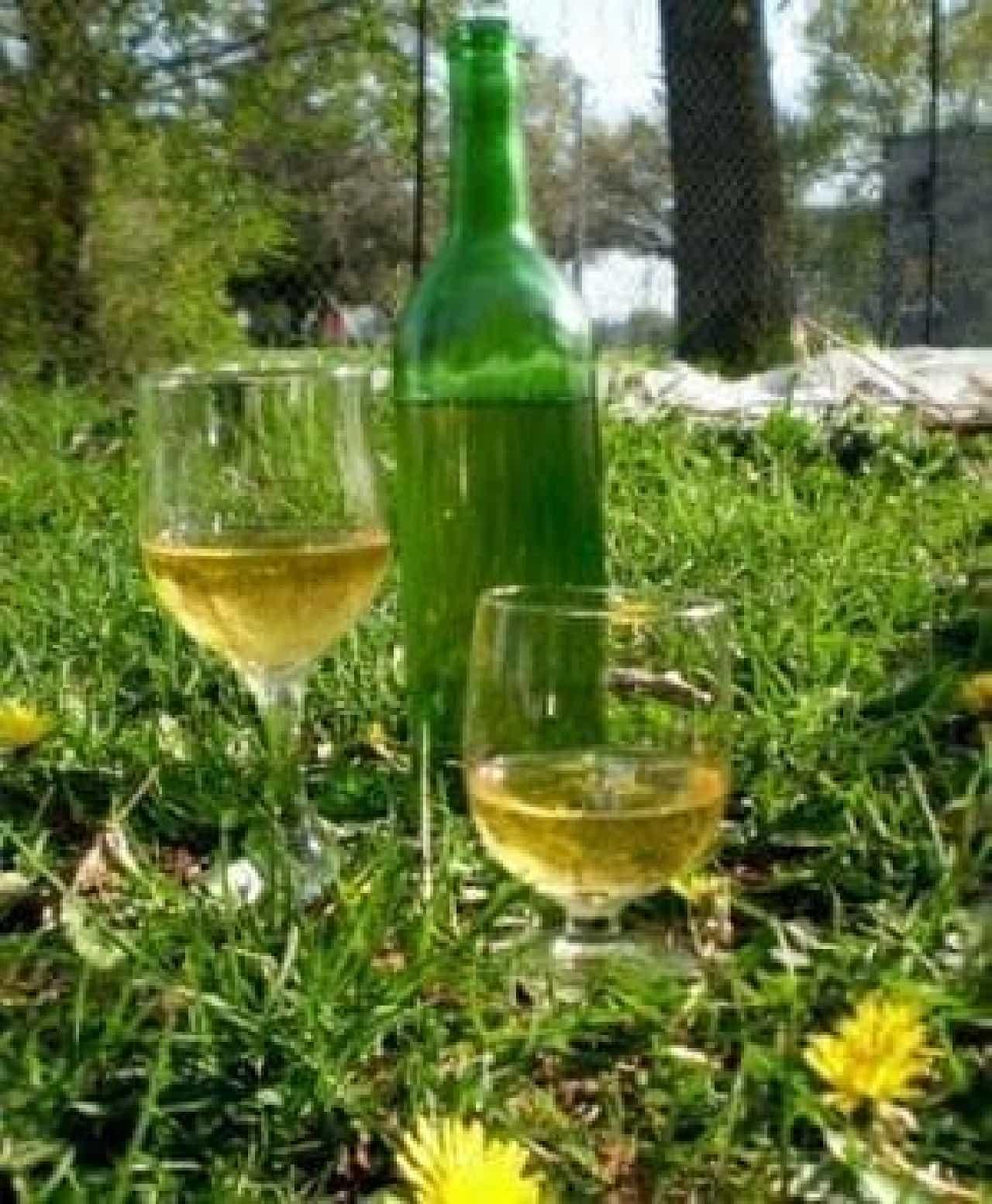 飲んでみたい、タンポポワイン  (出典:Murrieta Wine Field 公式 Facebook ページ)