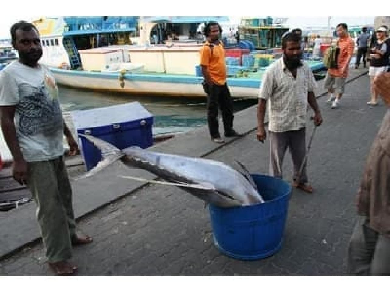 世界で一番魚を食べているモルディブの方たち